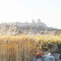 Viaggi organizzati a Malta: guida ai percorsi rurali