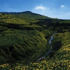 Greening The Islands, la sostenibilità made in Malta