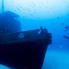 Malta tra le migliori destinazioni al mondo per il Diving