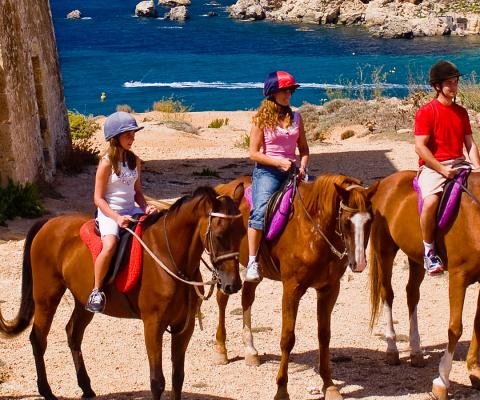 A cavallo alla scoperta di Malta