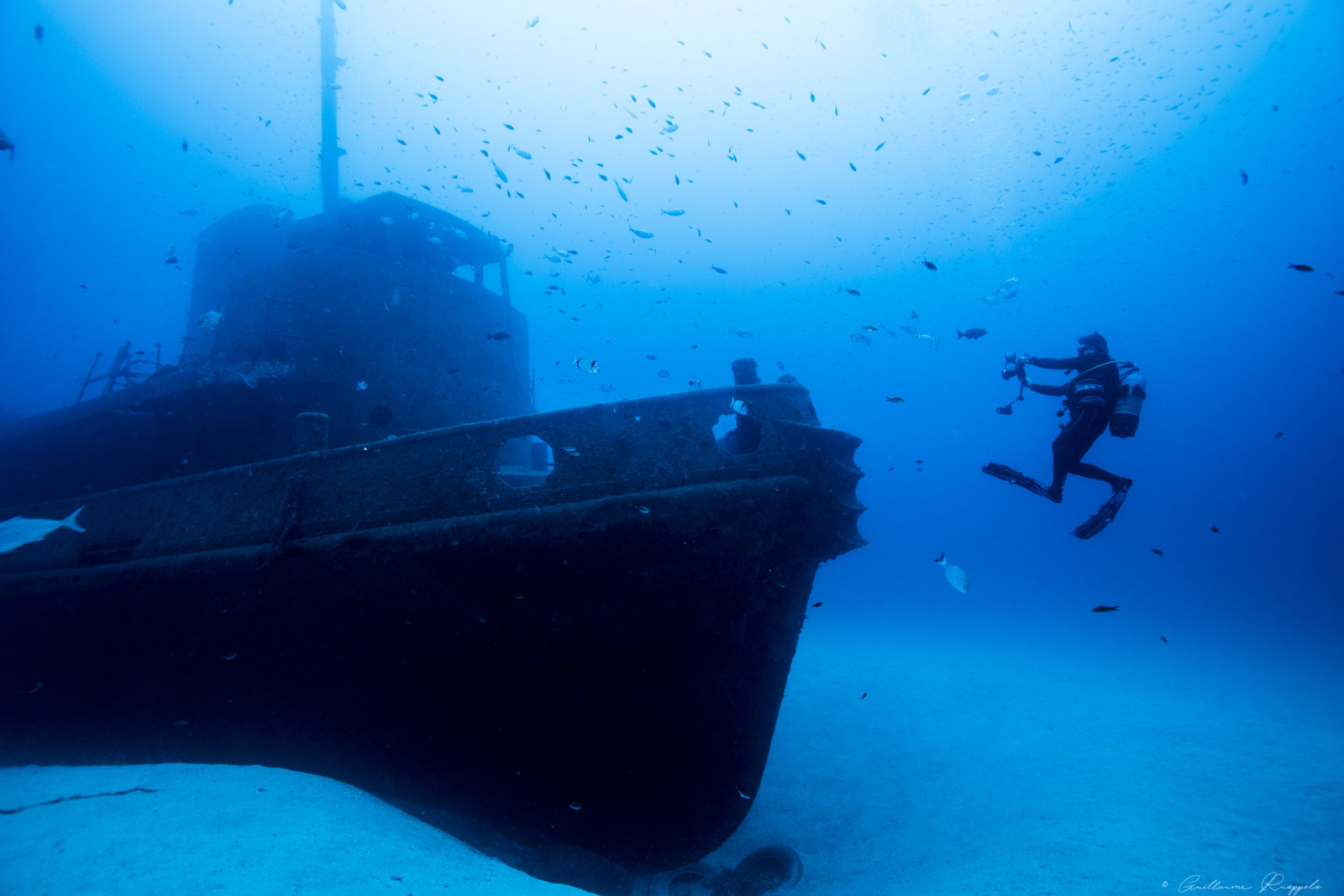 Diving Malta © Guillaume Ruoppolo