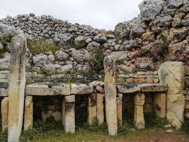 Templi Malta