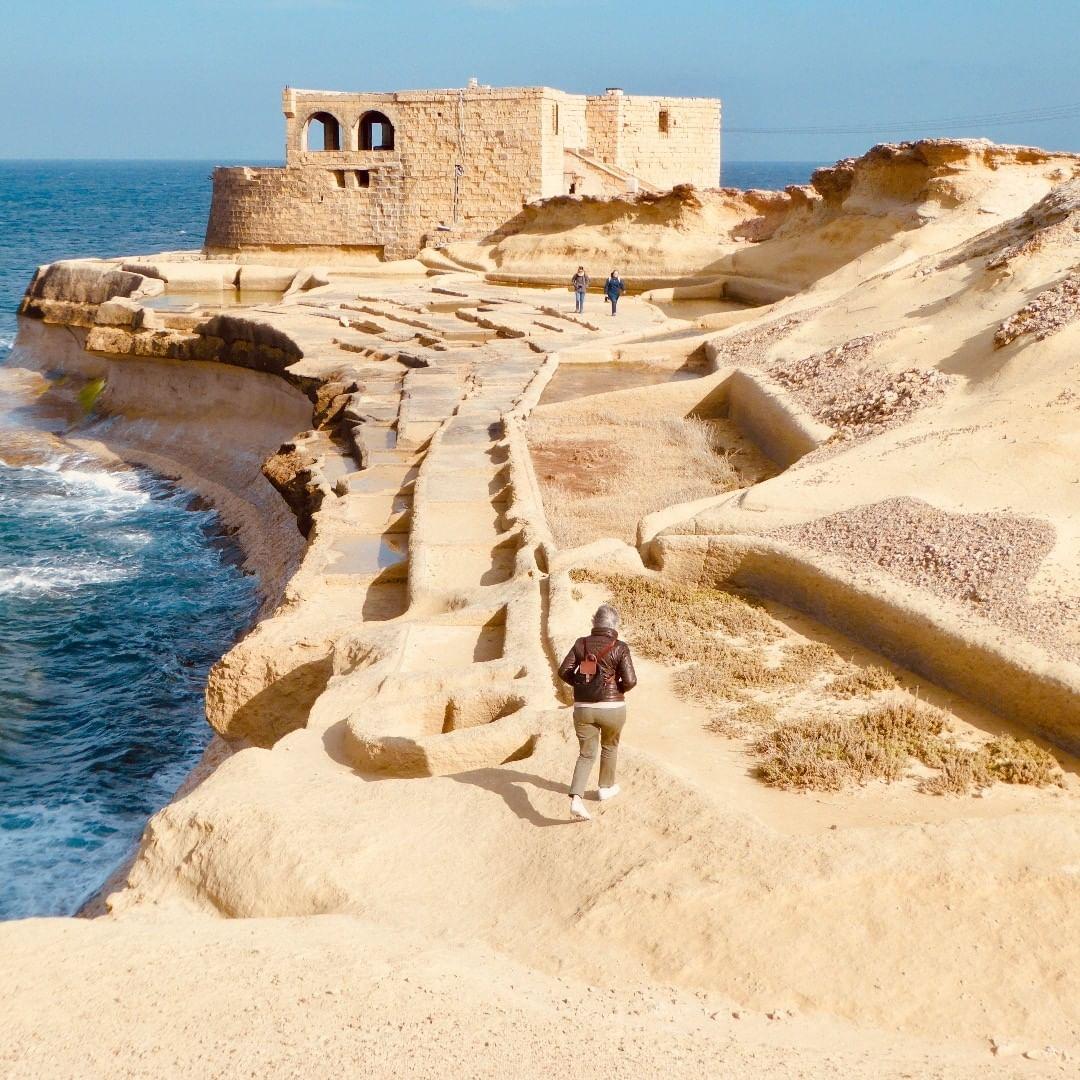 Malta saline