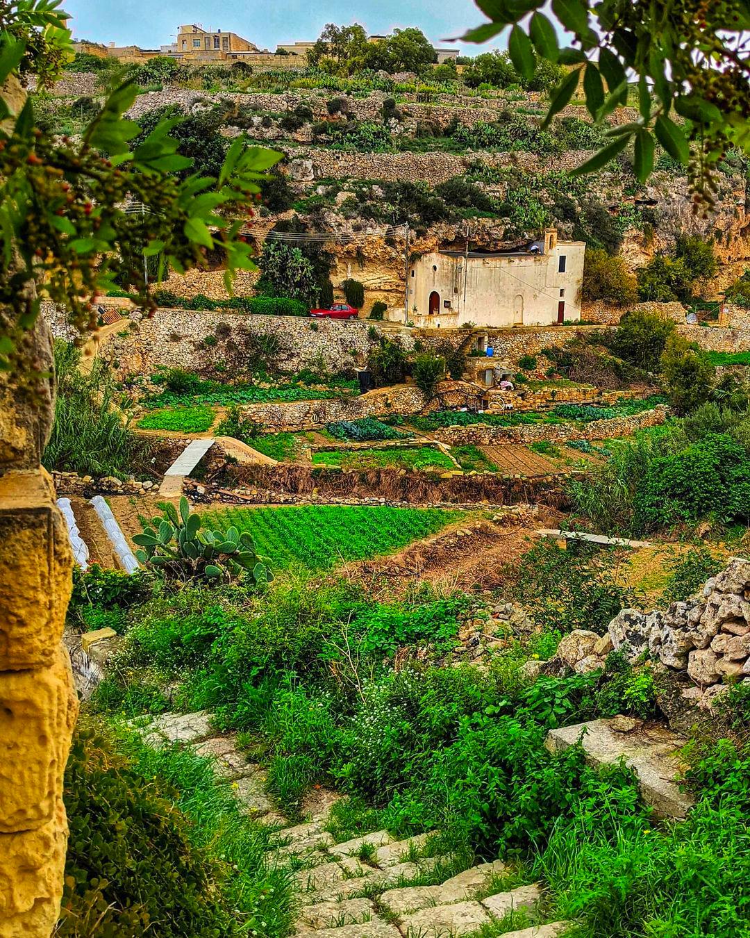 Lunzjata Valley - Malta